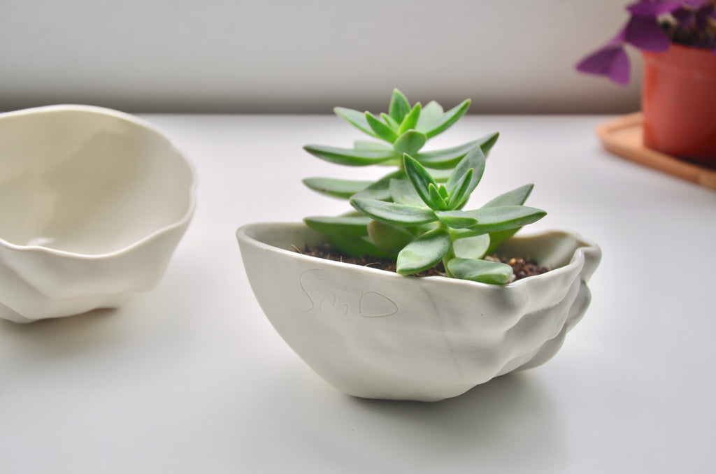 Handcrafted porcelain planter | Eat & Sip Singapore ceramics