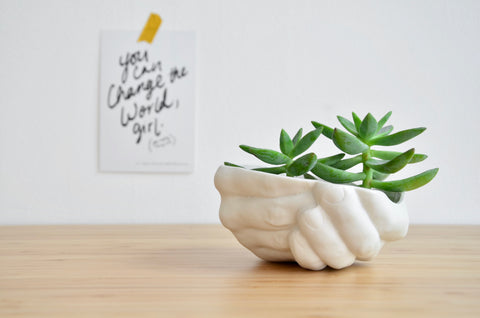 Handcrafted porcelain planter | Singapore plants