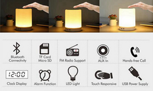 Portable Lamp and Bluetooth Speaker with over 10 features. - Clever and Modern Home and office furniture. Pet Furniture
