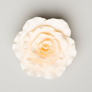 "3"" Formal Rose - Cream (16 per box)"