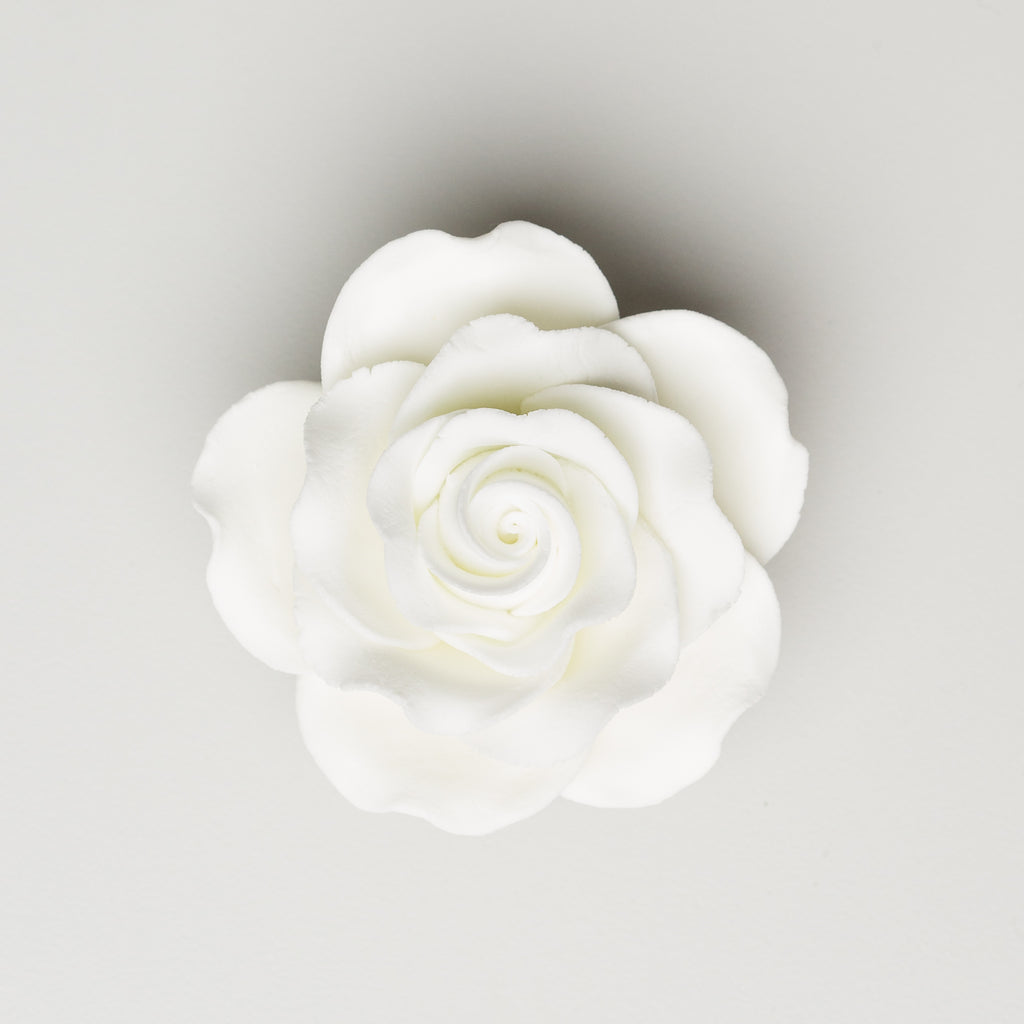 "2.5"" Queen Elizabeth Rose - White (25 per box)"