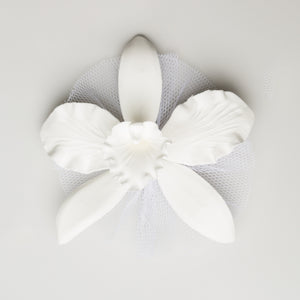 "5.5"" Cattleya Orchid - XL - White w/Tulle (6 per box)"