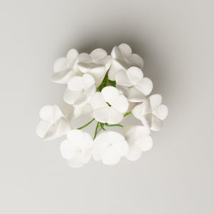 "1/2"" Apple Blossom - White (144 per box)"