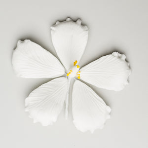 "3.5"" Hibiscus - Medium - White"
