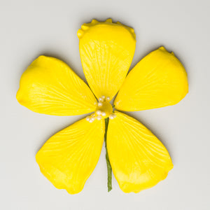 "3.5"" Hibiscus - Lemon Yellow"