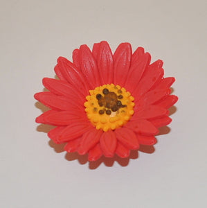"1.5"" Shasta Daisy - Red (32 per box)"