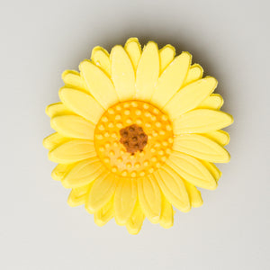 "2.25"" Shasta Daisy - Yellow (16 per box)"