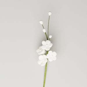 Forget-Me-Not Filler - White