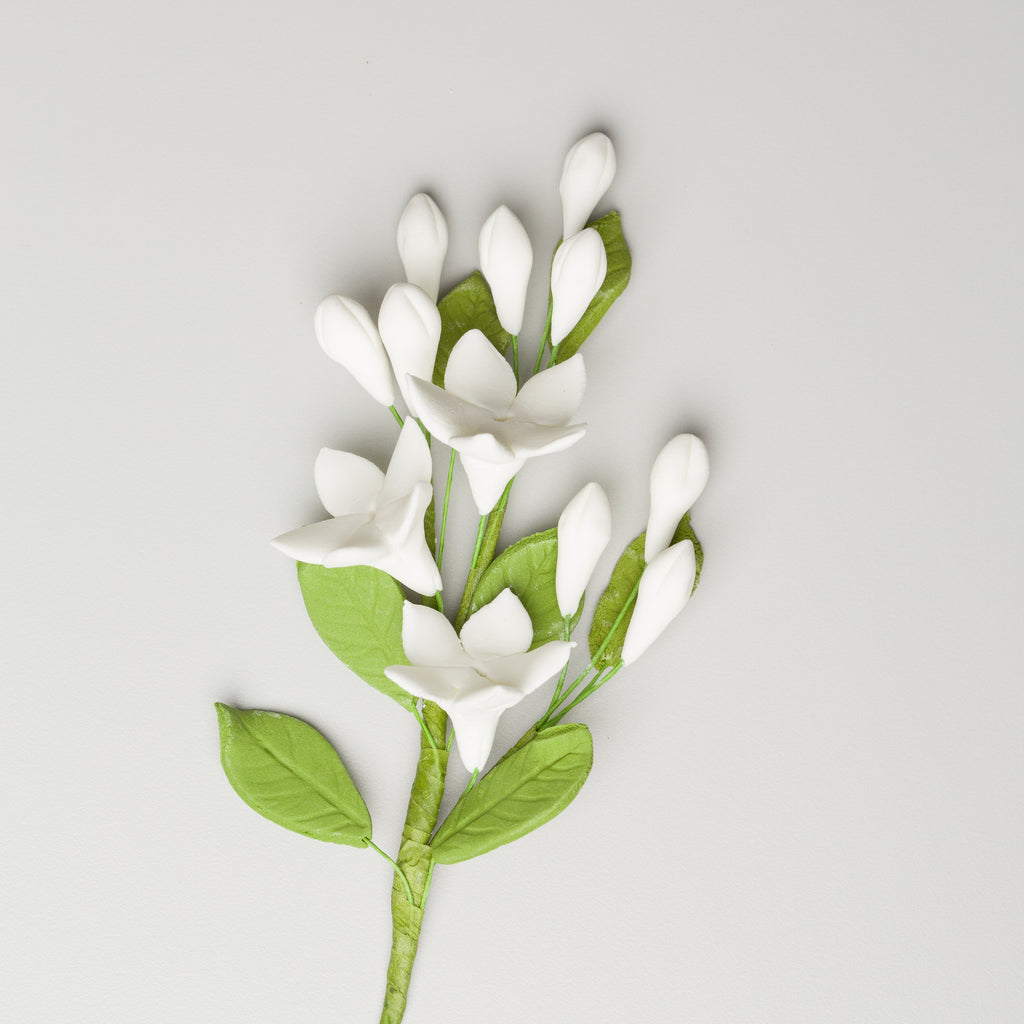 "3.5"" Stephanotis Filler - Small"