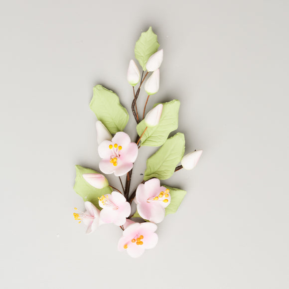 Apple Blossom with Leaves Spray