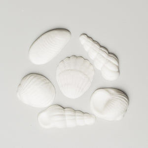 Seashell Assortment 3 (60 per box)