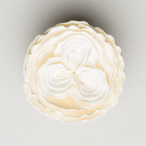"2.5"" Heritage Rose - White (16 per box)"