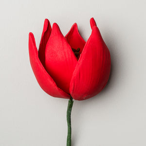 "2"" French Tulip - Red"
