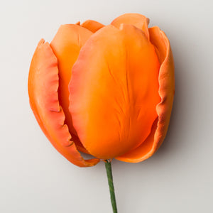 "4"" French Tulip - Orange"