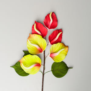 "7.25"" Anthurium Spray - Red"