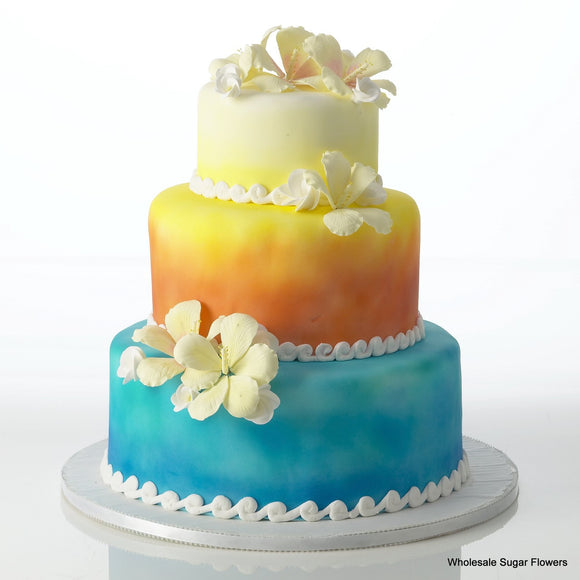 Tropical Paradise Cake Kit