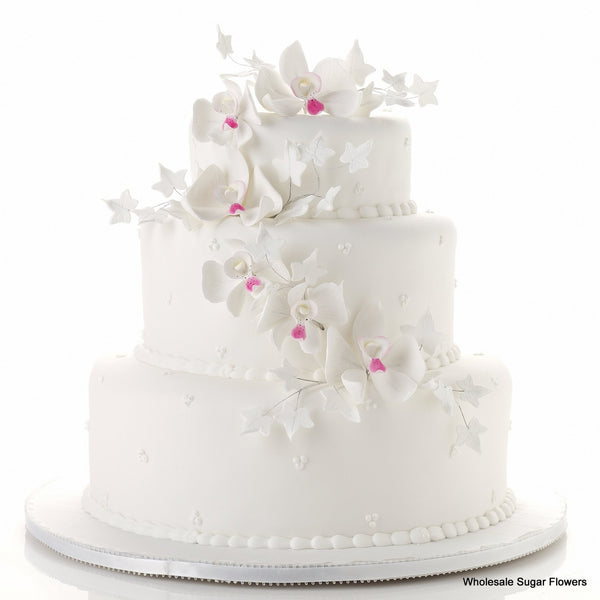 Brilliant Orchids Cake Kit
