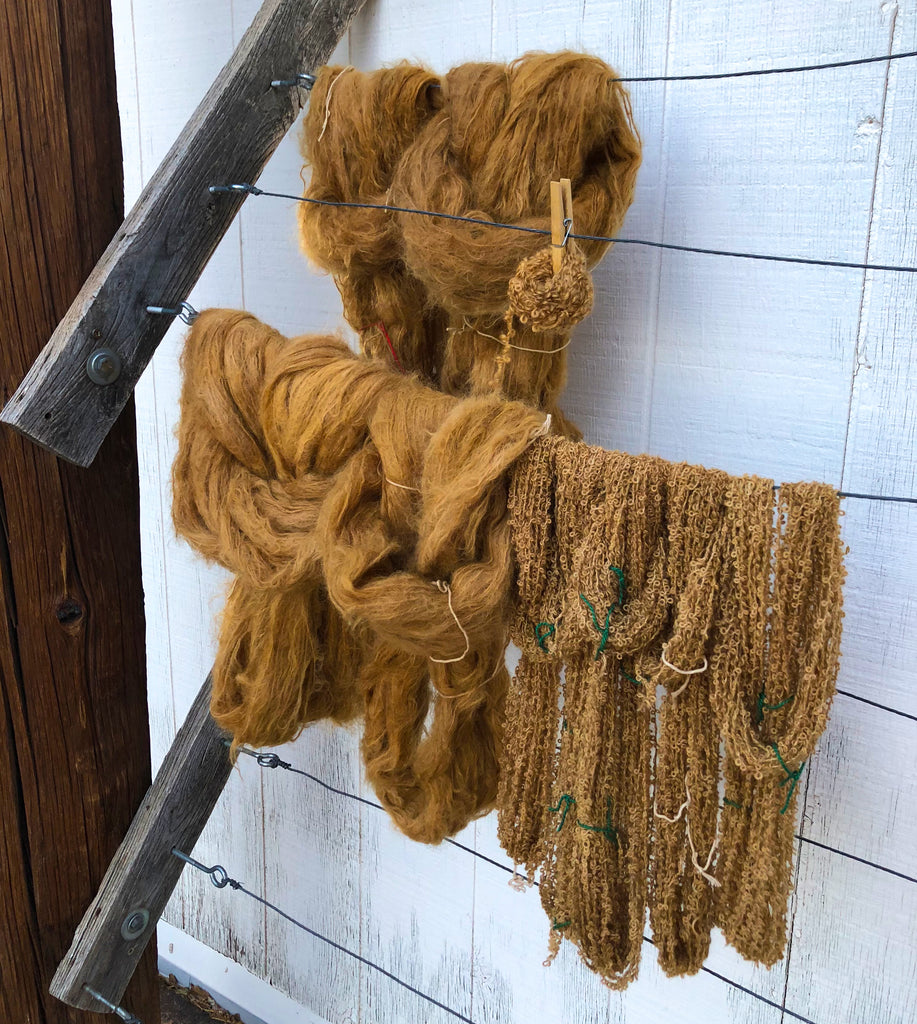 drying wool dyed in coffee