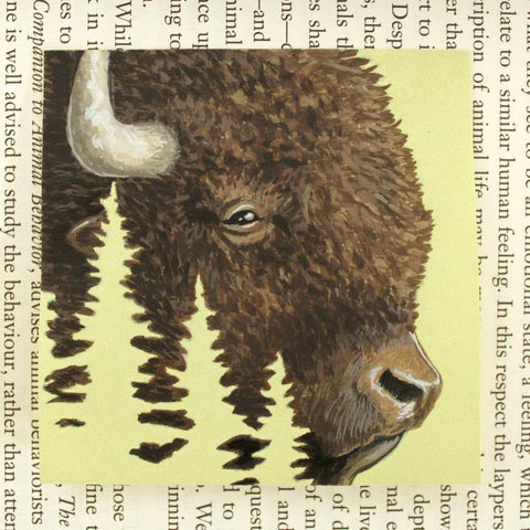 Bison Post-it