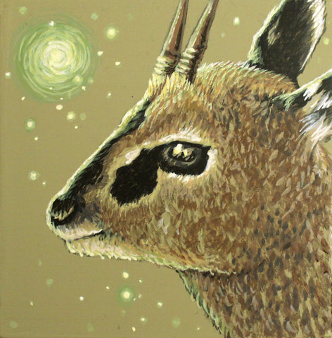Spirit Klipspringer