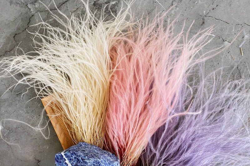 FEATHER GRASS BUNDLE