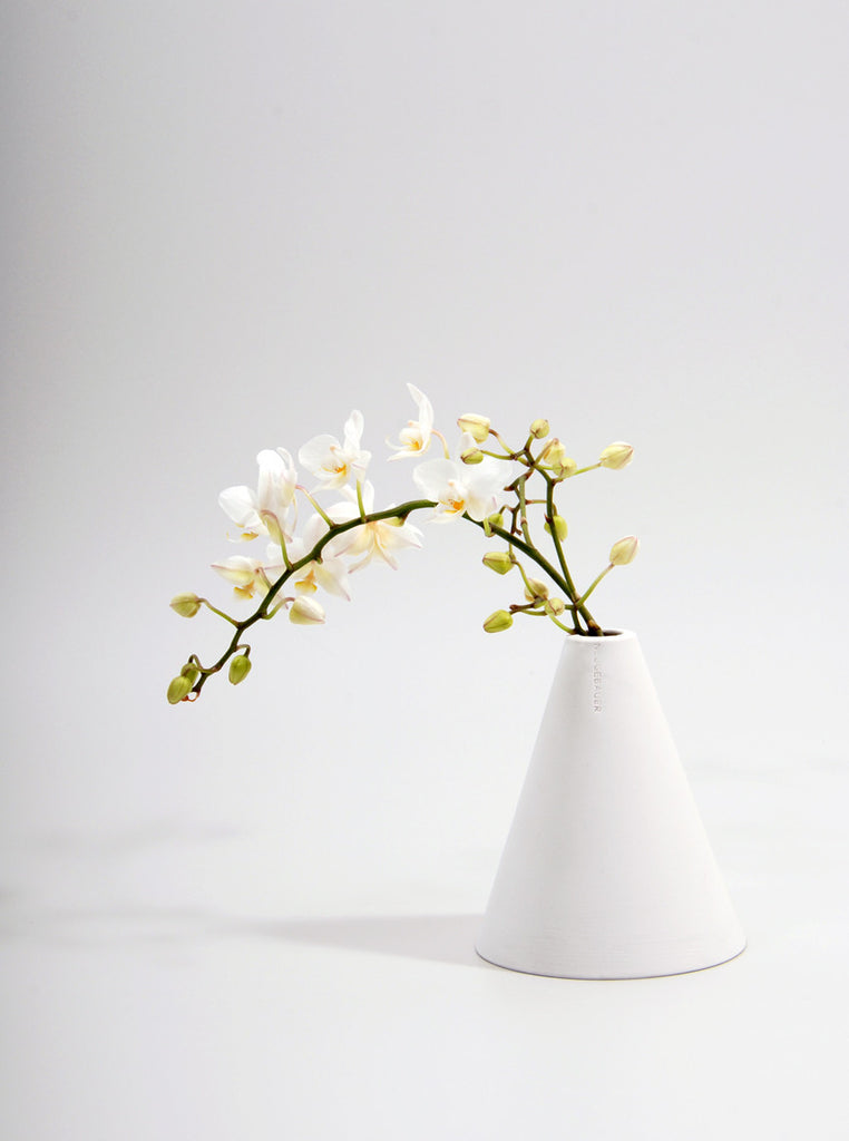 Cone Shaped Vase, June Eleven - Northernism