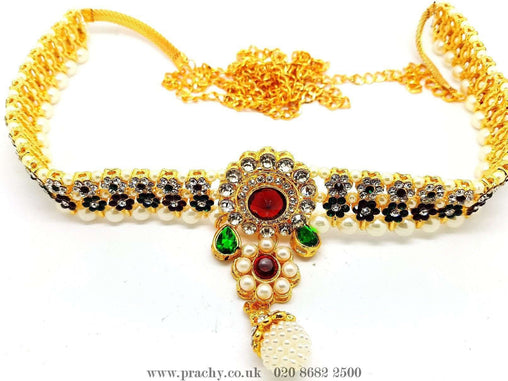 Prachy Creations : DJ 2216 - Saree belt - tp 1016, Multi / Gold
