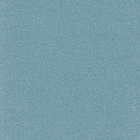 Light Blue Moleskin