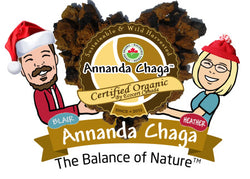 Annanda Chaga Mushrooms