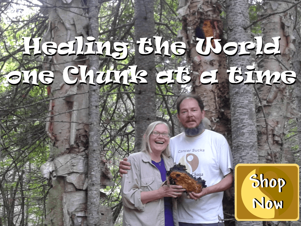 Heather and Blair Annanda Chaga mushrooms shop for chaga mushroom products