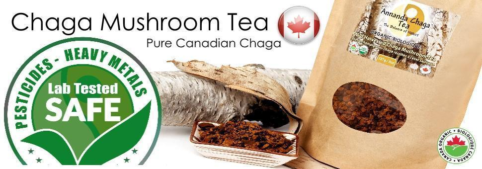 Canadian Chaga Mushrooms