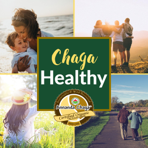 chaga benefits, benefits of chaga, chaga health, chaga cancer