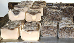 Chaga Mushroom Soap and Shampoo Bars