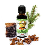 Fir Balsam and Chaga Mushroom Essential Oil - Annanda Organics-Annanda Chaga Mushrooms