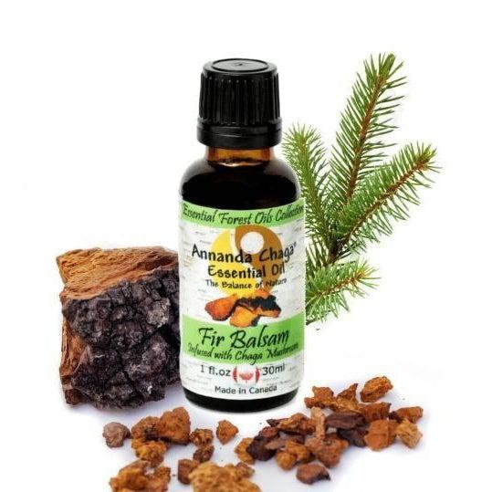 Fir Balsam Essential Oil With Chaga Mushroom