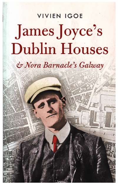 James Joyce's Dublin Houses by Vivien Igoe