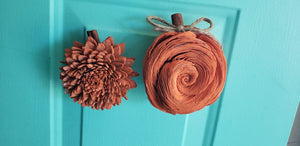 Pumpkin Magnets