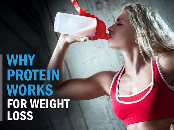Why Protein Works for Weight Loss