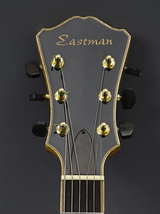 Eastman AR910CE - SOLD