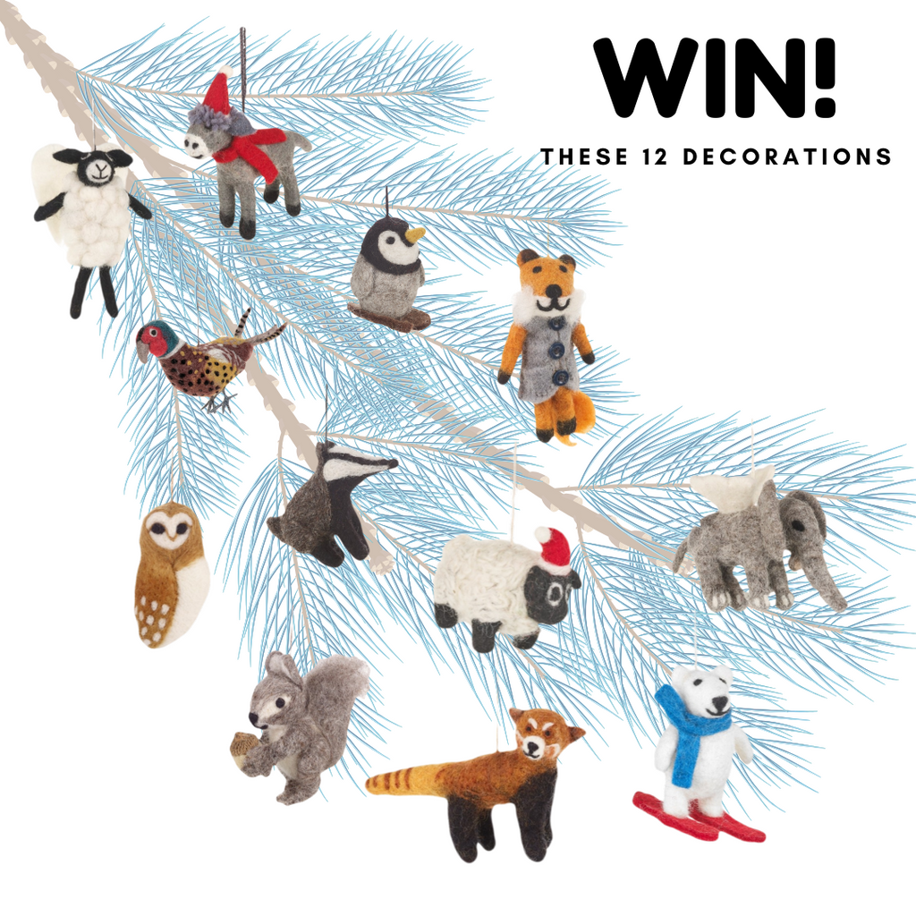 Win 12 Christmas Tree Decorations