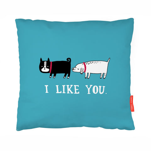 I Like You Dog Cushion | Funny Dog Gifts