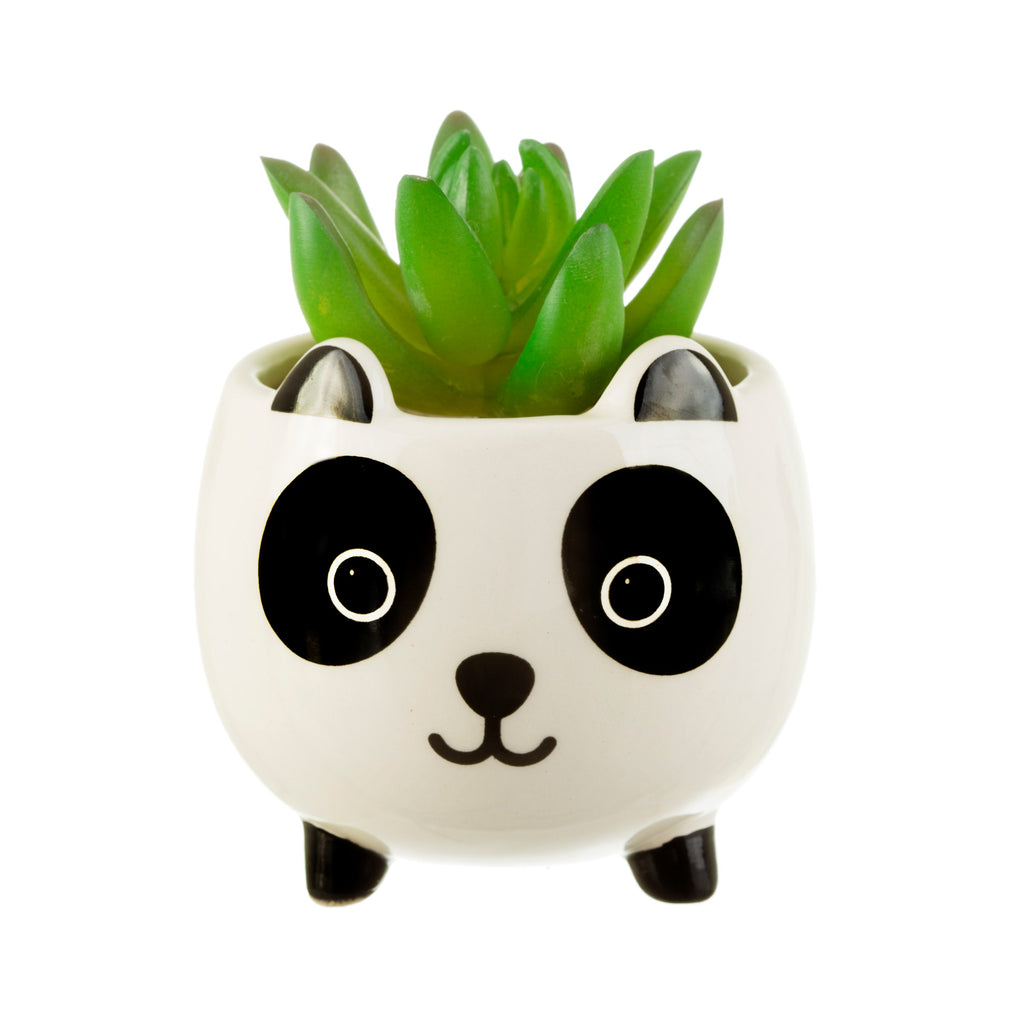 Mini Panda Plant Pot | Kawaii Animal Themed Gifts