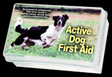 Active Dog First Aid Kit (hard shell)