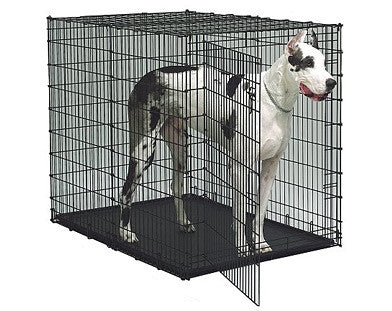 "Midwest ""Ginormus"" Double Door Pet Crate"