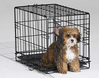 Midwest iCrate - Single Door Pet Crate