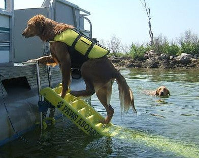 Doggy Boat Ladder