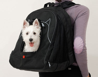 Pet Ego Pet At Work Travel System
