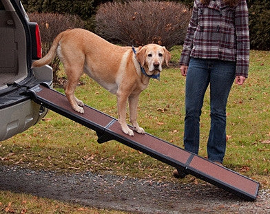 Pet Gear Tri-Fold Portable Pet Ramp