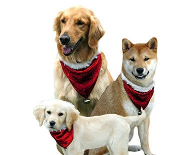 Santa Bandanna for Dogs
