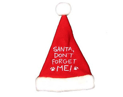 Santa Don't Forget Me Hat